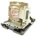 Porovnání ceny Lampa pro projektor BENQ W1000+, generická lampa s modulem, partno: 5J.J0W05.001