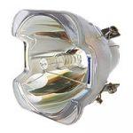Porovnat ceny Lampa pro projektor TOSHIBA TDP-T1, originální lampa bez modulu, partno: TLPLT1A