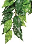 Porovnání ceny Rostlina EXO TERRA Ficus velká 70 cm