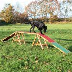 Porovnání ceny Trixie Dog Activity AGILITY nácviková lávka 456x64x30 cm