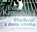 Porovnat ceny Radioservis - vydavatelství českého rozhlasu Přítelkyně z domu smutku - CDmp3