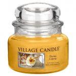 Porovnat ceny Sviečka v sklenenej dóze Village Candle Sladký med, 312 g