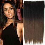 Porovnat ceny Clip in vlasy - 60 cm dlhý pás vlasov - ombre štýl (odtieň 2 T 10) - Světové Zboží