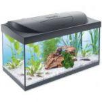 Porovnání ceny Akvárium set TETRA Starter Line LED 60 x 30 x 30 cm 54l