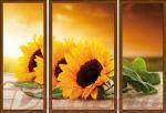 Porovnání ceny EVK Obraz slunečnice 3 díly; velký; vnější rám