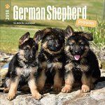 Porovnat ceny Brown Trout Publishers 2018 German Shepherd Puppies Mini Wall