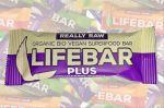 Porovnání ceny HARERA Life Blueberry Quinoa BIO RAW, Lifebar Plus 47g