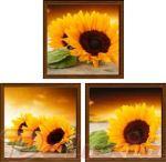 Porovnání ceny EVK Obraz slunečnice 3 díly; střední; vnější rám