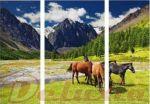Porovnání ceny EVK Obraz koně 3 díly; velký; vnitřní rám