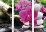 Porovnání ceny EVK Obraz orchidej 3 díly; velký; vnitřní rám