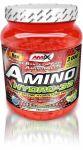 Porovnat ceny Amix Amino Hydro 32 - 550tbl.